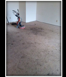 Deep Stain Carpet Cleaning